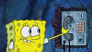 SpongeBob Squarepants Prequel Spin-Off Kamp Koral Premieres This Summer