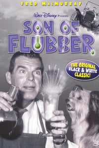 Son of Flubber as Officer Kelly