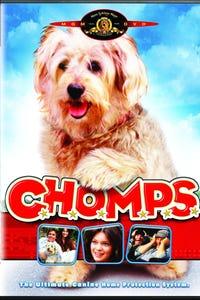 C.H.O.M.P.S. as Casey Norton