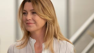 Meredith Is Finally Going on Dates This Season, Says Grey's Anatomy Boss