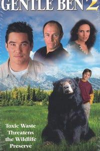 Gentle Ben 2---Danger on the Mountain as Dakota