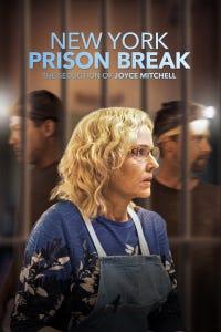 New York Prison Break: The Seduction of Joyce Mitchell