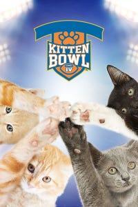 Kitten Bowl IV: Playoff Games