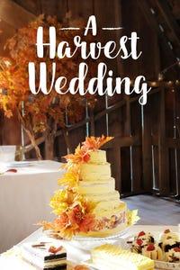 A Harvest Wedding as Sarah Bloom