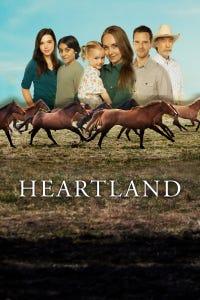Heartland as Ben Stillman