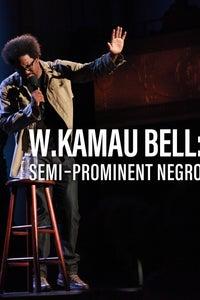 W. Kamau Bell: Semi-Prominent Negro