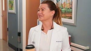Grey's Anatomy Brings Back Scott Speedman as Meredith's Blast from the Past
