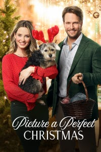Picture a Perfect Christmas