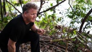 Gordon Ramsay Snacks on a Tarantula in This Exclusive Uncharted Sneak Peek