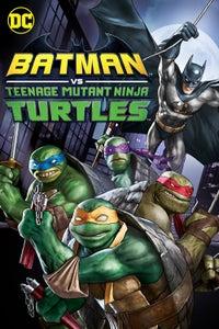 DCU: Batman vs Teenage Mutant Ninja Turtles as Michelangelo