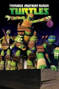 Teenage Mutant Ninja Turtles as Leonardo