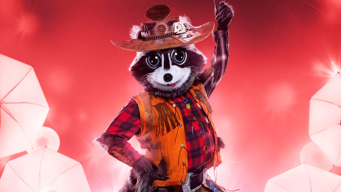 Racoon, The Masked Singer