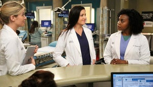 This Grey's Anatomy Teaser Hints at [SPOILER]'s Exit