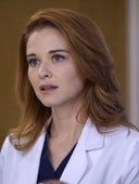 Grey's Anatomy, Season 13 Episode 14 image