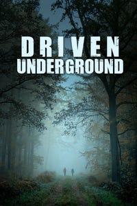 Driven Underground as Christy Palmer