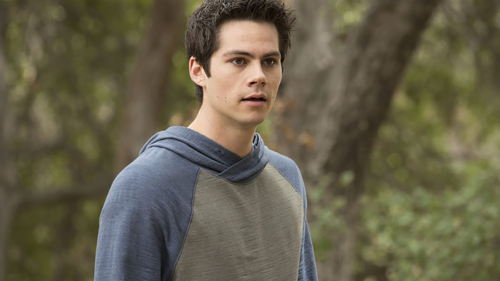 Dylan O'Brien, Teen Wolf