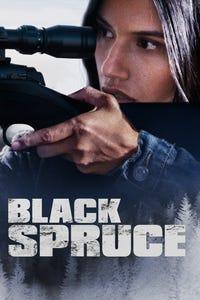 Through Black Spruce as Geeta