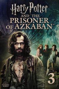 Harry Potter and the Prisoner of Azkaban as Rubeus Hagrid