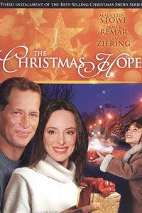 The Christmas Hope as Nathan Andrews
