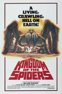 Kingdom of the Spiders as Vern Johnson