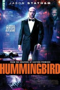 Hummingbird as Dawn