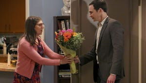 The Big Bang Theory Mega Buzz: What You Need to Know About Sheldon and Amy's First Time