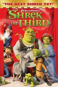 Shrek the Third as Captain Hook