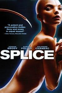 Splice as Clive Nicoli