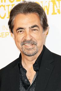 Joe Mantegna as Frank Gavilan