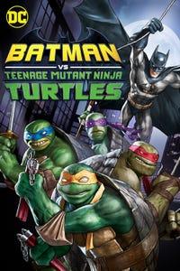 DCU: Batman vs Teenage Mutant Ninja Turtles as Batman / Joker