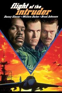 Flight of the Intruder as Lt. Cdr. Virgil Cole