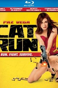 Cat Run as Sean Moody