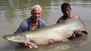 Exclusive: Animal Planet Wades into Another Season of River Monsters