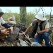 Dirty Jobs, Season 5 Episode 6 image