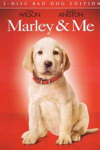 Marley & Me as Dr. Platt
