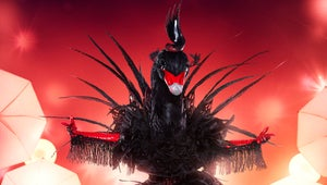 Who Is the Black Swan on The Masked Singer?