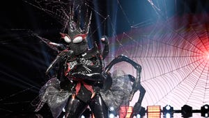 The Masked Singer's Black Widow Confesses She's No Stranger to Wearing Disguises in Public