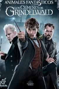 Fantastic Beasts: The Crimes of Grindelwald as Newt Scamander