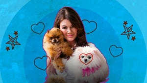 Real Housewives of Beverly Hills' Puppygate Is the Most Divisive Drama of the TV Season