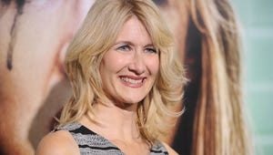What If HBO Revived Under-appreciated Laura Dern Dramedy Enlightened?