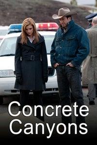Concrete Canyons