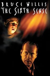 The Sixth Sense as Lynn Sear