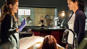 Rizzoli & Isles' Sasha Alexander: It's a Big Year for Maura