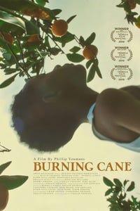 Burning Cane as Helen Wayne