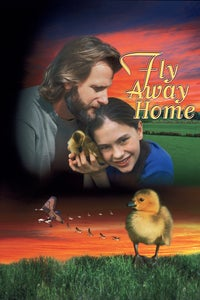 Fly Away Home as Television Anchor