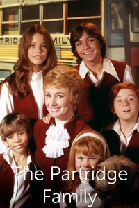 The Partridge Family as Keith Partridge