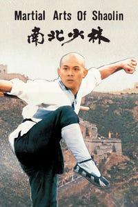 Martial Arts of Shaolin as Zhi Ming