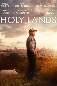 Holy Lands as David