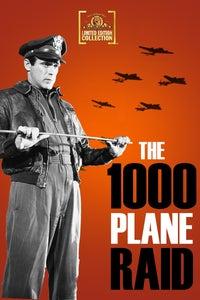 The Thousand Plane Raid as Turret Gunner