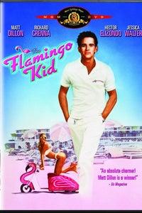 The Flamingo Kid as Hawk Ganz